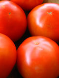 Tomatos. Some fresh tomatoes inside a wooden bowl Royalty Free Stock Images