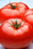 Tomatos. 3 tomatos on white background Stock Photography