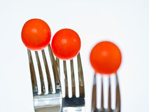 Tomatos. 3 tomatoes on forks almost glowing red against a white background Royalty Free Stock Images