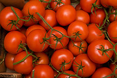 Tomatos in box Stock Image