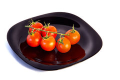 Tomatos branch Royalty Free Stock Images