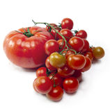 Tomatos branch in water splashes Royalty Free Stock Photos