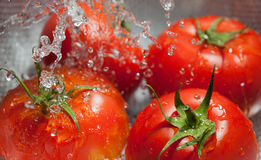 Tomatos on colander Stock Photo