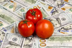 Tomatos on a dollars bills. Three ripe red tomatoes located on a hundred dollar bill Royalty Free Stock Images