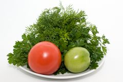 Tomatos and fresh herbs Stock Photo