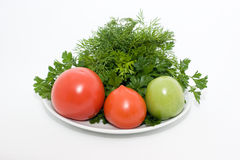 Tomatos and fresh herbs Stock Image