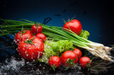 Tomatos and greenery in water Stock Photos