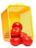 Tomatos In Plastic Basket Royalty Free Stock Photo