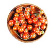 Tomatos isolated Royalty Free Stock Image