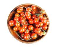 Tomatos isolated Royalty Free Stock Image