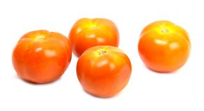 Tomatos isolated on white background.  Royalty Free Stock Photography