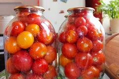 Tomatos in jars prepared for preservation Stock Images