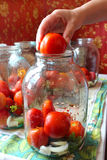 Tomatos in jars prepared for preservation Royalty Free Stock Photos