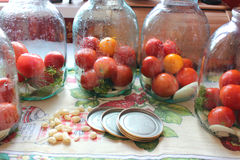 Tomatos in jars prepared for preservation Royalty Free Stock Photography