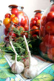 Tomatos in jars prepared for preservation Stock Photography