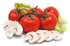 Tomatos with mushroom lie on leaves Stock Photos