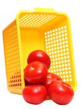 Tomatos in plastic basket Royalty Free Stock Photo
