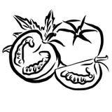 Tomatos Sketch Vegetables Outline Vector Artwork Stock Image
