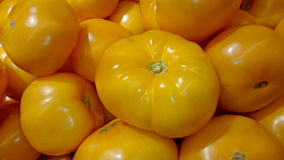 Tomatos Royalty Free Stock Photography
