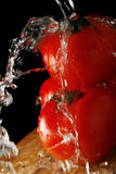 Tomatos and Water Royalty Free Stock Photo