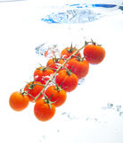 Tomatos in the water Royalty Free Stock Images