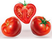 Tomatos whole and sliced Royalty Free Stock Photos