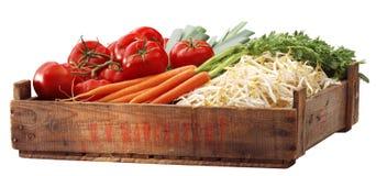 Tomatous krat en andere groenten stock afbeelding