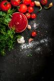 Tomatsås eller ketchup med ingredienser Royaltyfri Foto