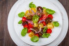 Tomatsallad med lökar och basilika Arkivfoto