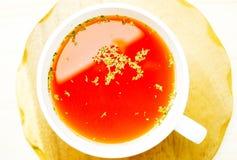 Tomatsoppa royaltyfri fotografi