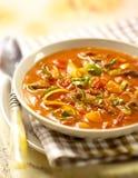Tomatsoppa fyllde med köttvegtables och en garnering av persilja Fotografering för Bildbyråer