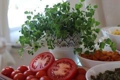 Tomatsoppa, Tricolors pasta, italiensk pasta, vanlig pasta, kortkort beskjuter pasta, Royaltyfri Fotografi