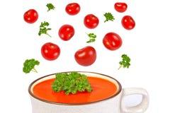 Tomatsoup, örtar och tomater som isoleras på white Arkivfoton