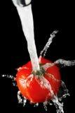 tomatvatten royaltyfri fotografi