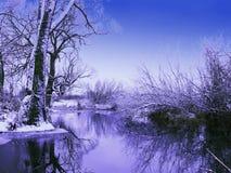 Tombée de la nuit givrée de l'hiver Image libre de droits