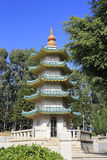 Tomb pagoda of chenjingxian Stock Images