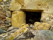 Tomb stone grave arheology desocvery Stock Image