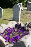 Tomba con i fiori porpora in priorità alta Fotografie Stock