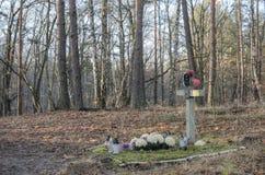 Tomba del soldato sconosciuto Fotografie Stock