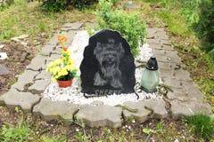Tomba sul cimitero dell'animale domestico fotografie stock libere da diritti