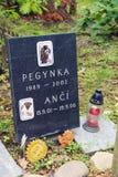 Tomba sul cimitero dell'animale domestico immagine stock libera da diritti