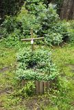 Tomba sul cimitero dell'animale domestico immagini stock