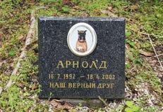 Tomba sul cimitero dell'animale domestico fotografia stock libera da diritti