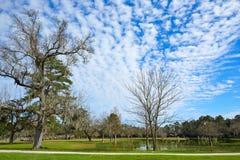 Tomball巴洛塔斯公园在休斯敦得克萨斯 免版税库存图片