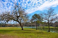 Tomball巴洛塔斯公园在休斯敦得克萨斯 免版税库存照片