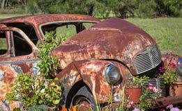 Tombe de voiture avec des fleurs Image libre de droits