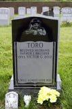 Tombe de Yomo Toro Images libres de droits