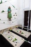 Tombe di Jacinta Marto e della sorella Lucia immagini stock libere da diritti