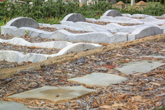 Tombe di marmo Curvy Immagini Stock Libere da Diritti