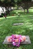 Tombe hawaïenne image libre de droits